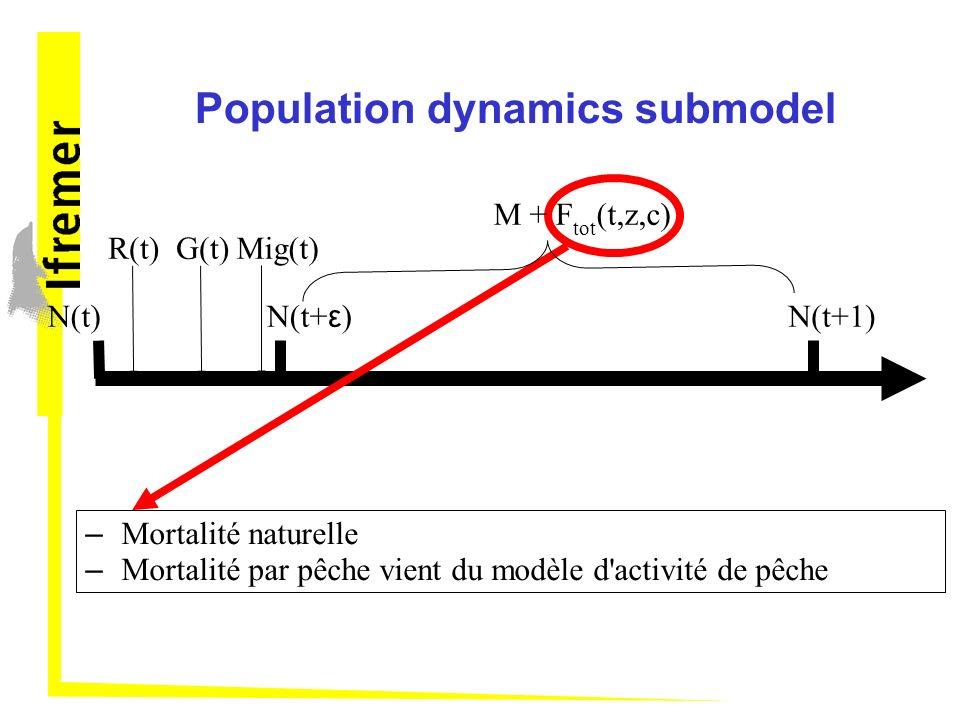 Population dynamics submodel
