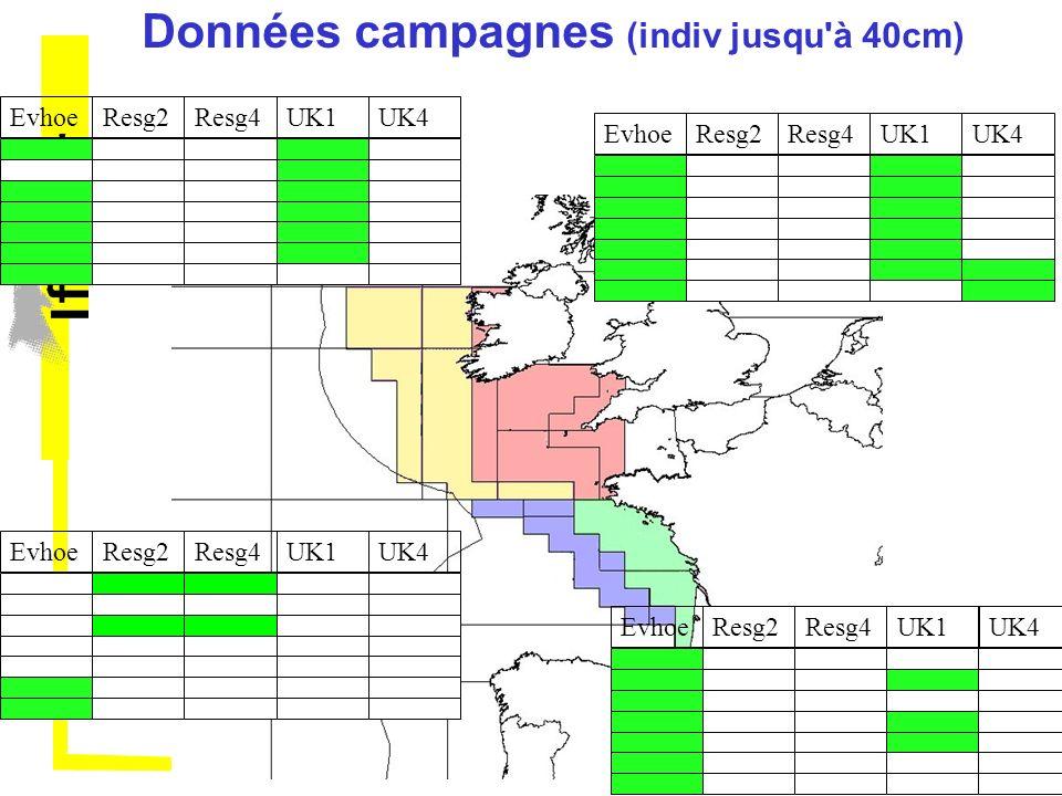 Données campagnes (indiv jusqu à 40cm)