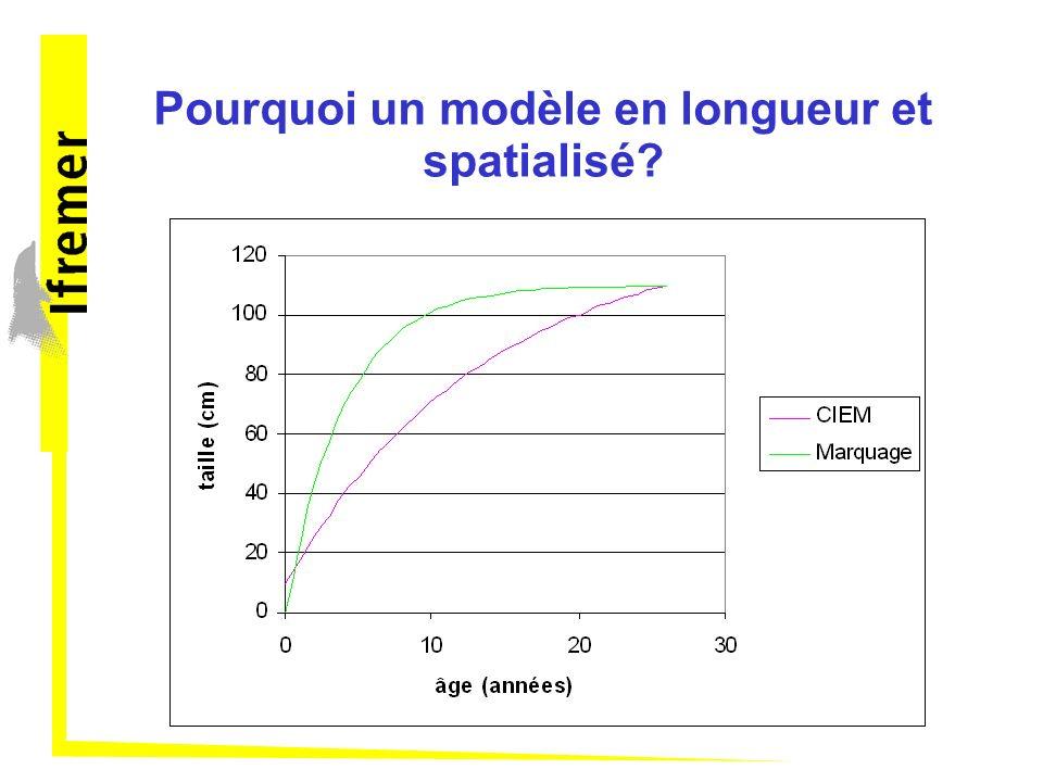 Pourquoi un modèle en longueur et spatialisé