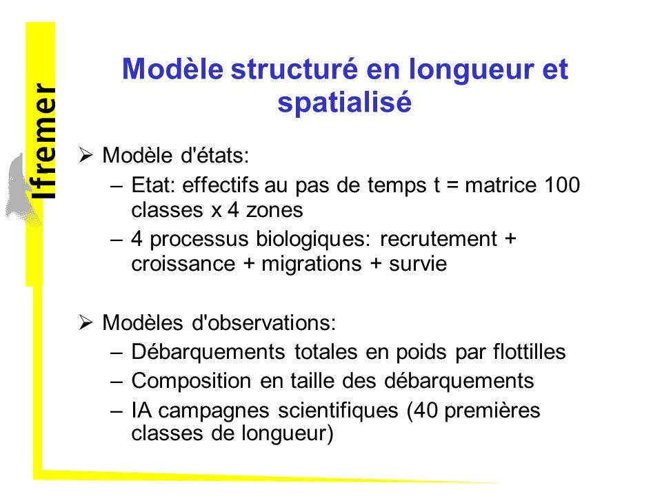 Modèle structuré en longueur et spatialisé