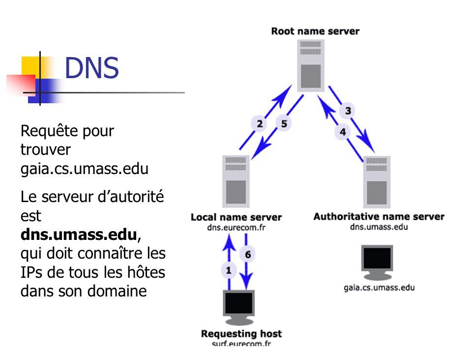 DNS Requête pour trouver gaia.cs.umass.edu