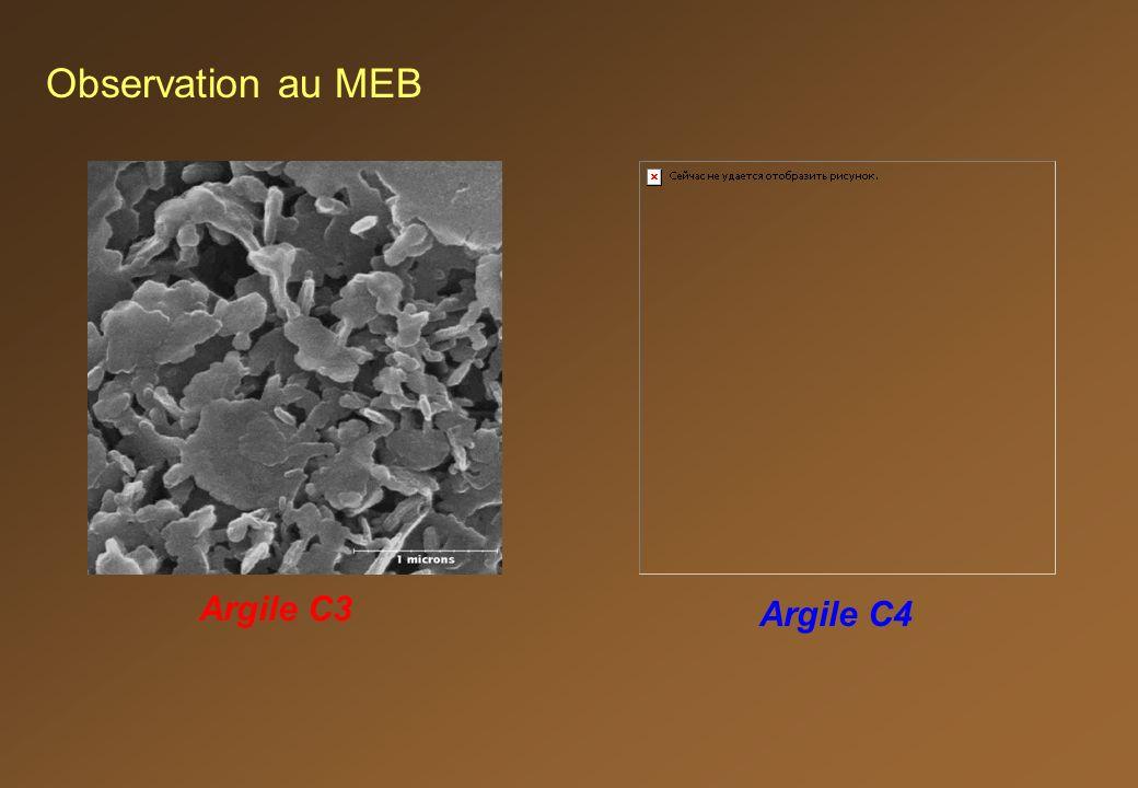 Observation au MEB Argile C3 Argile C4