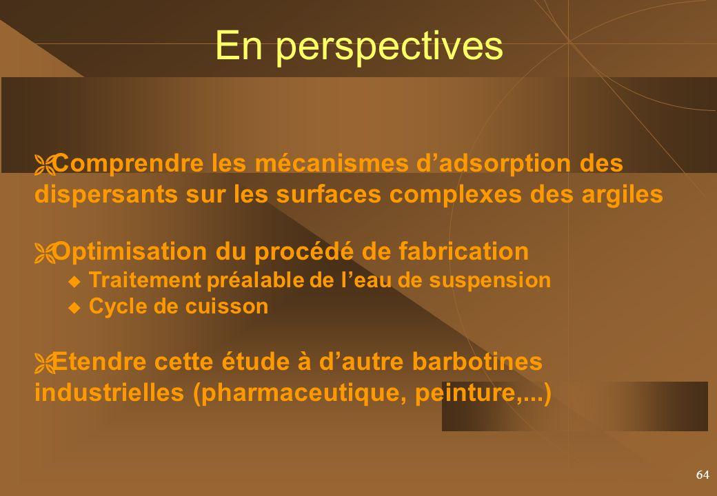 En perspectives Comprendre les mécanismes d'adsorption des dispersants sur les surfaces complexes des argiles.
