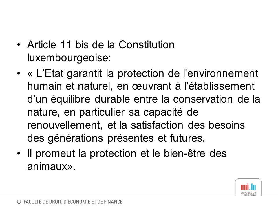 Article 11 bis de la Constitution luxembourgeoise: