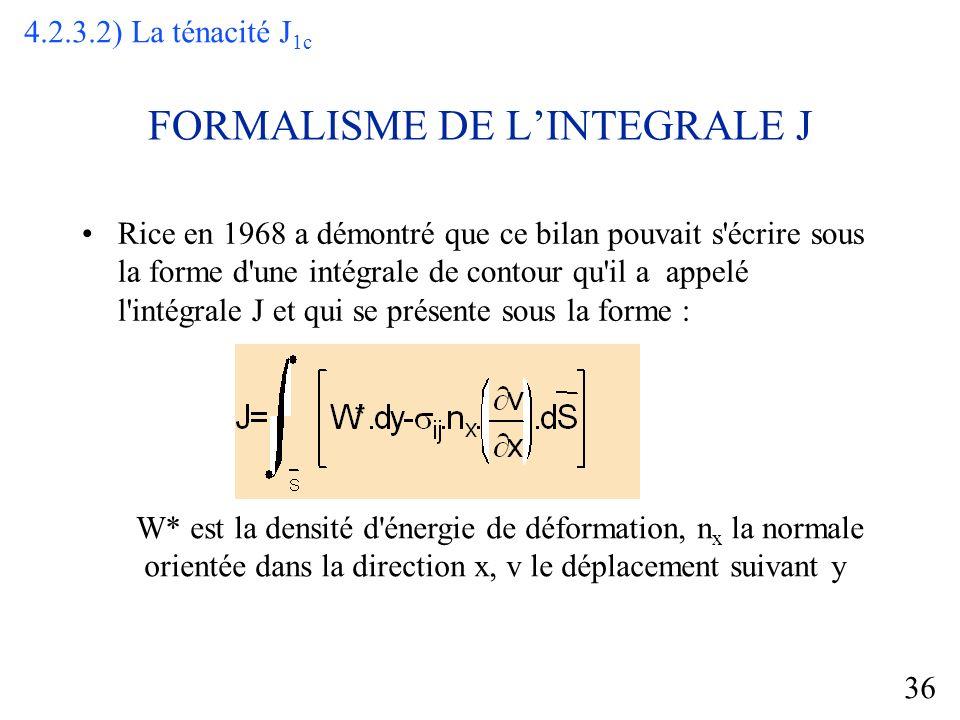 FORMALISME DE L'INTEGRALE J