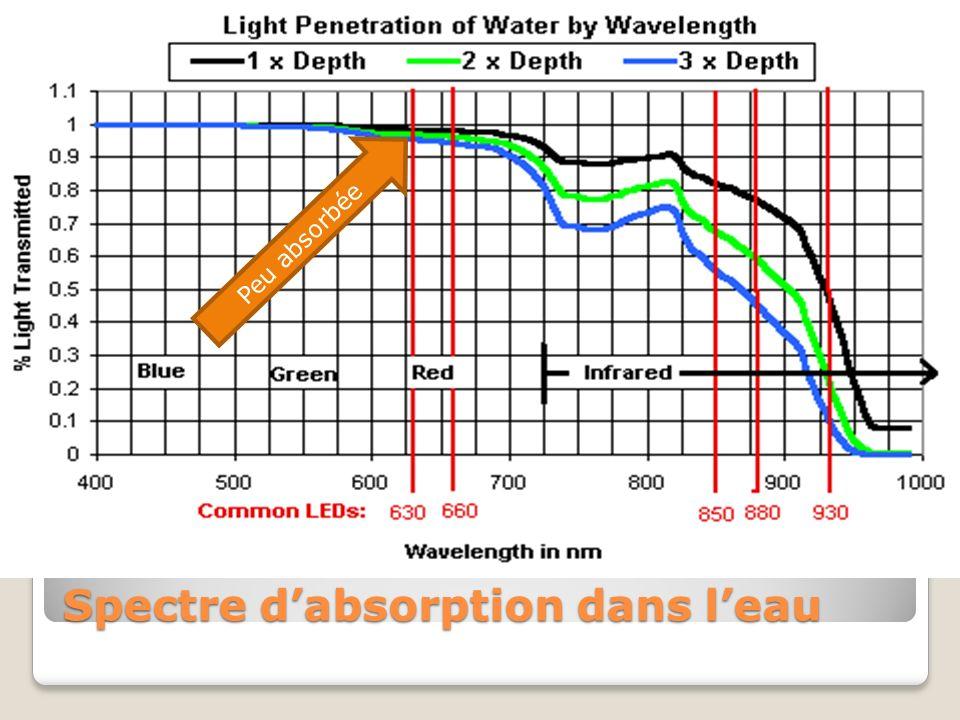Courbe de Spectre d'absorption dans l'eau