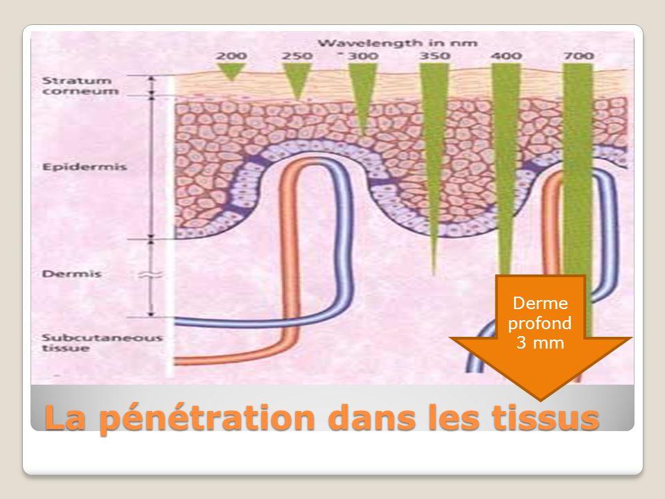 La pénétration dans les tissus