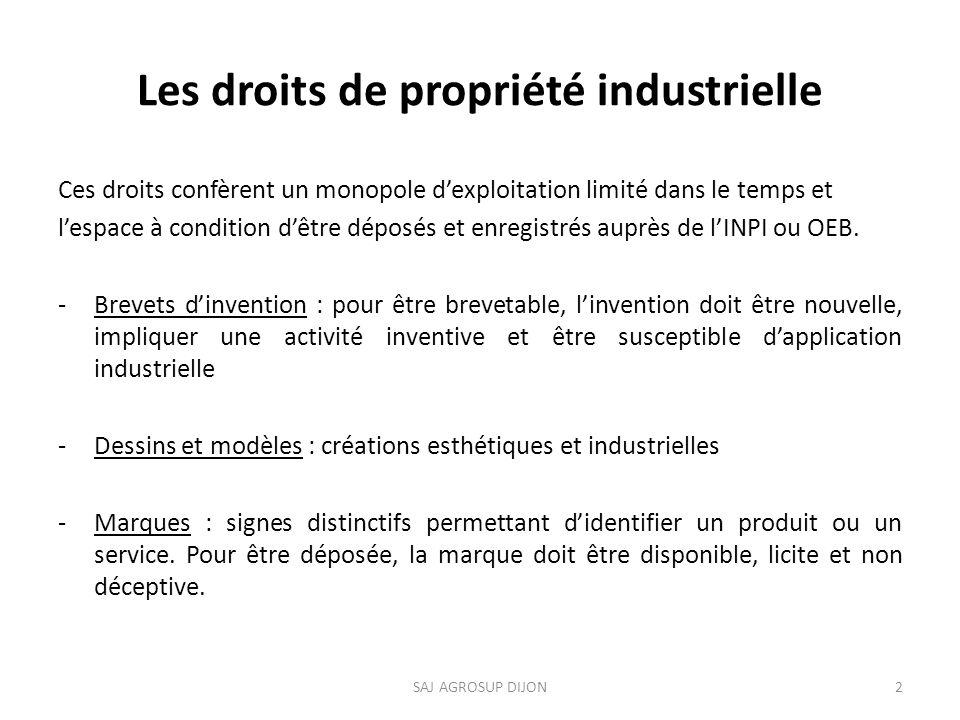 Les droits de propriété industrielle
