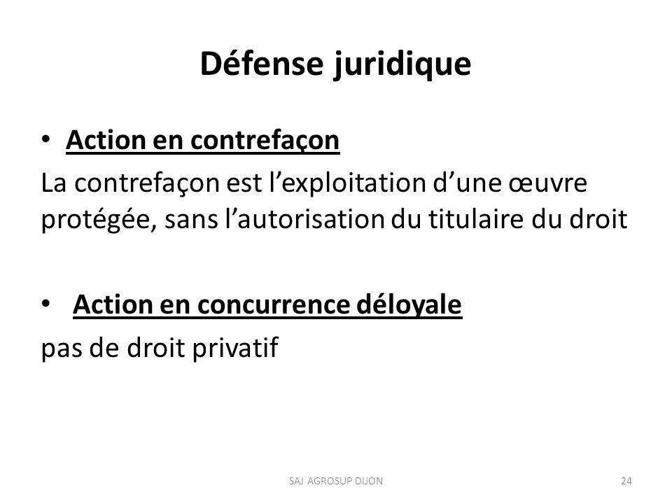 Défense juridique Action en contrefaçon