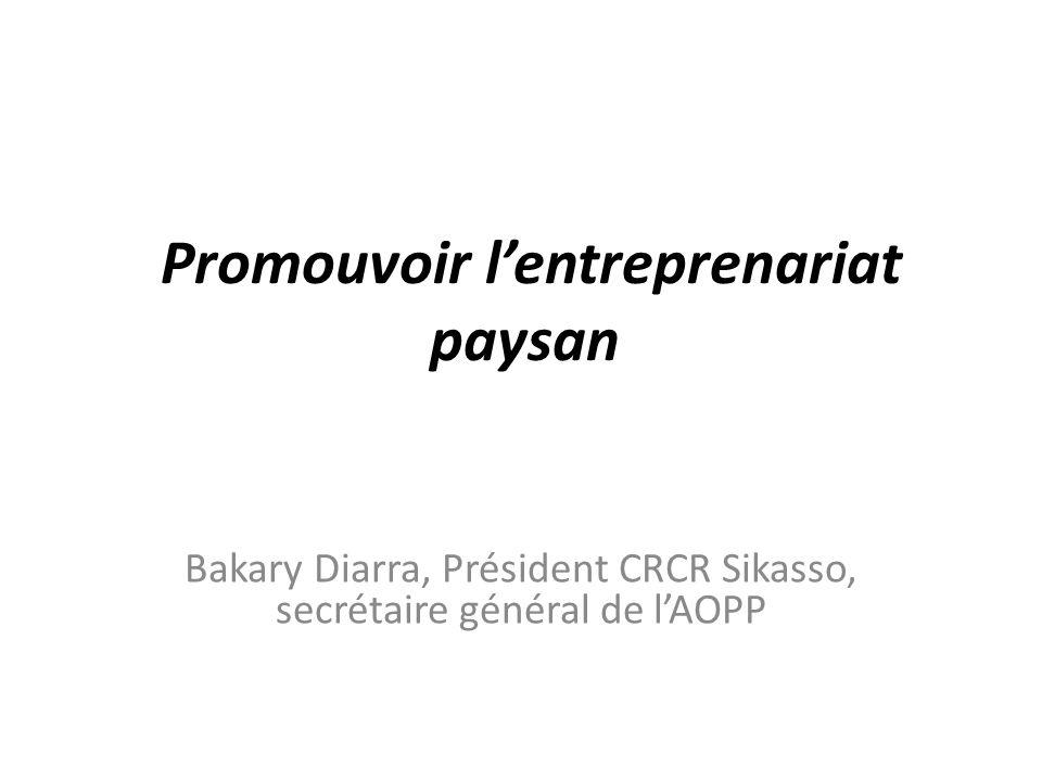 Promouvoir l'entreprenariat paysan