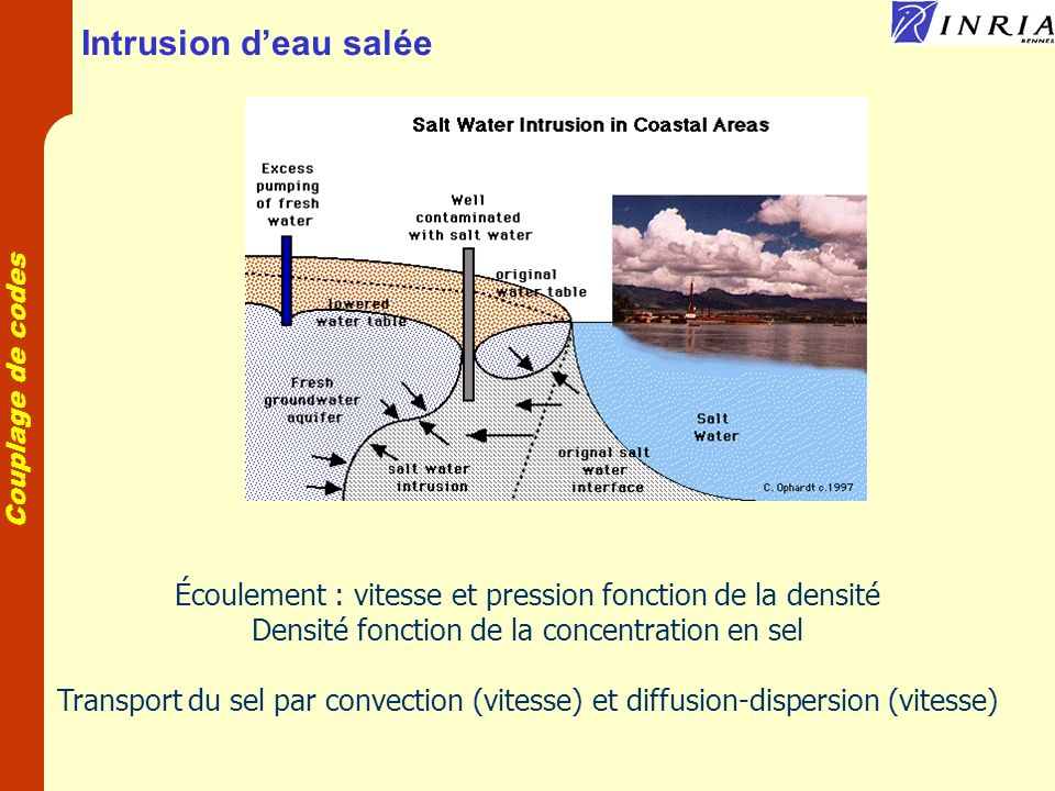 Intrusion d'eau salée Écoulement : vitesse et pression fonction de la densité. Densité fonction de la concentration en sel.