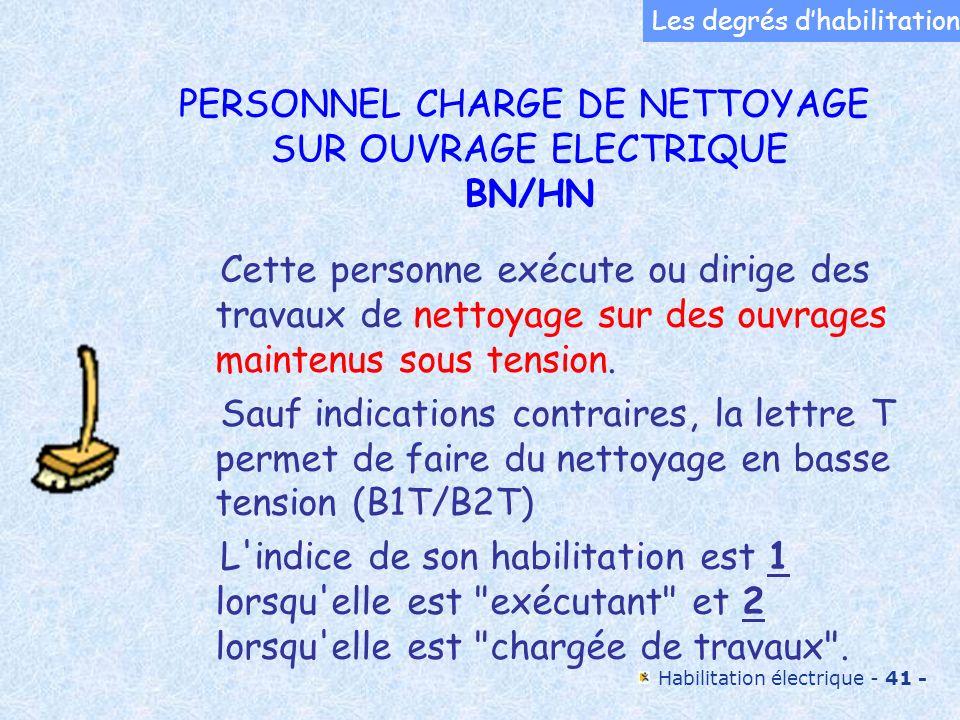 PERSONNEL CHARGE DE NETTOYAGE SUR OUVRAGE ELECTRIQUE BN/HN