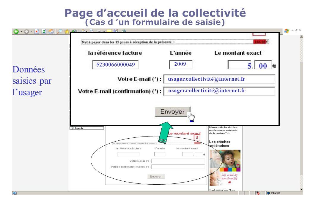 Page d'accueil de la collectivité (Cas d 'un formulaire de saisie)
