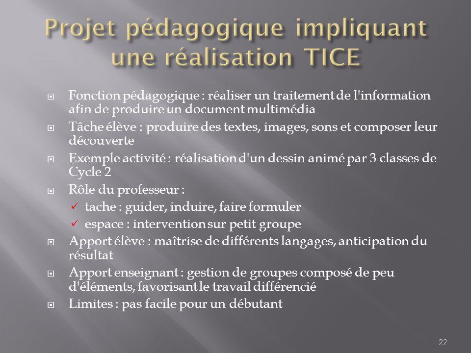 Projet pédagogique impliquant une réalisation TICE