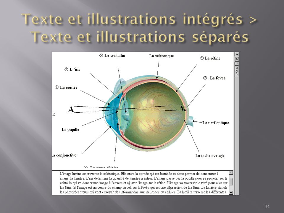 Texte et illustrations intégrés > Texte et illustrations séparés