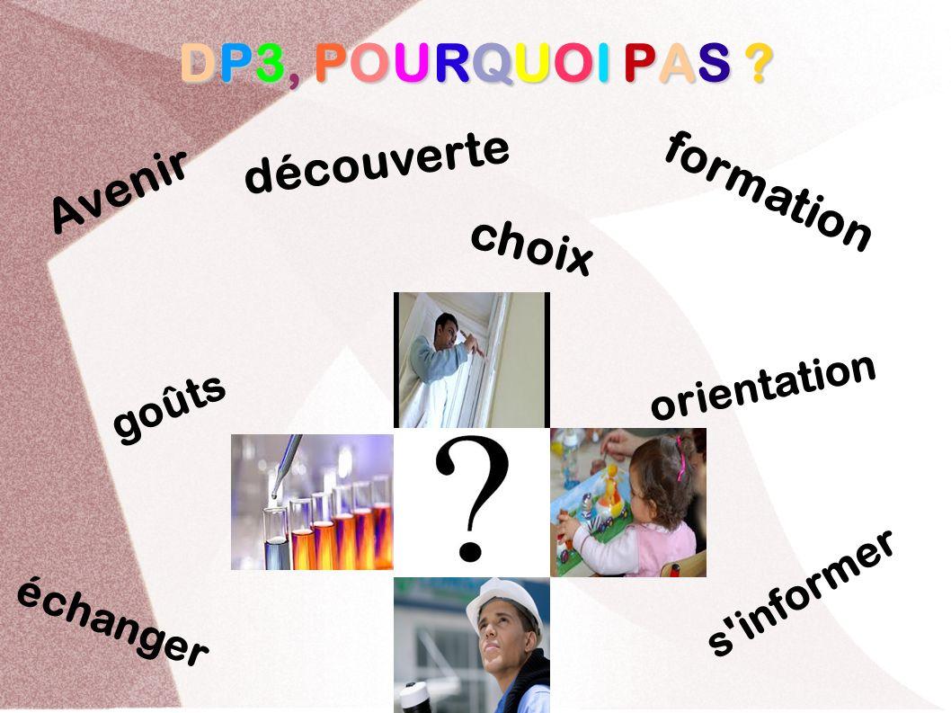 DP3, POURQUOI PAS découverte Avenir formation choix goûts