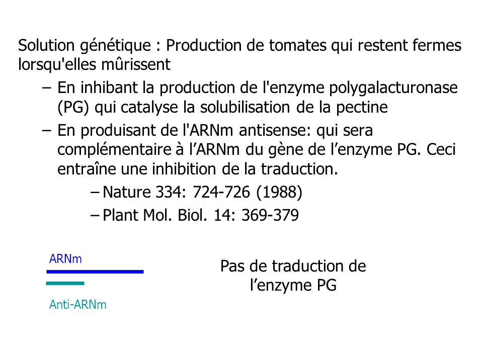 Pas de traduction de l'enzyme PG