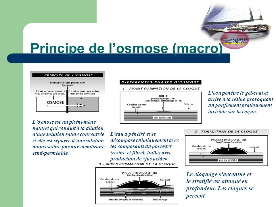 Principe de l'osmose (macro)