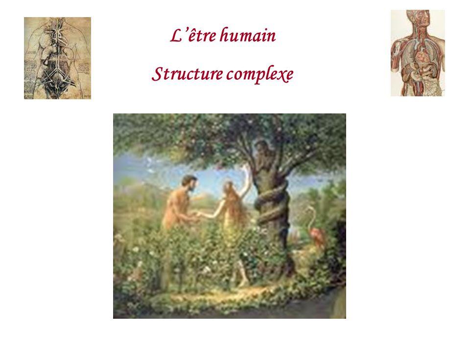 L'être humain Structure complexe