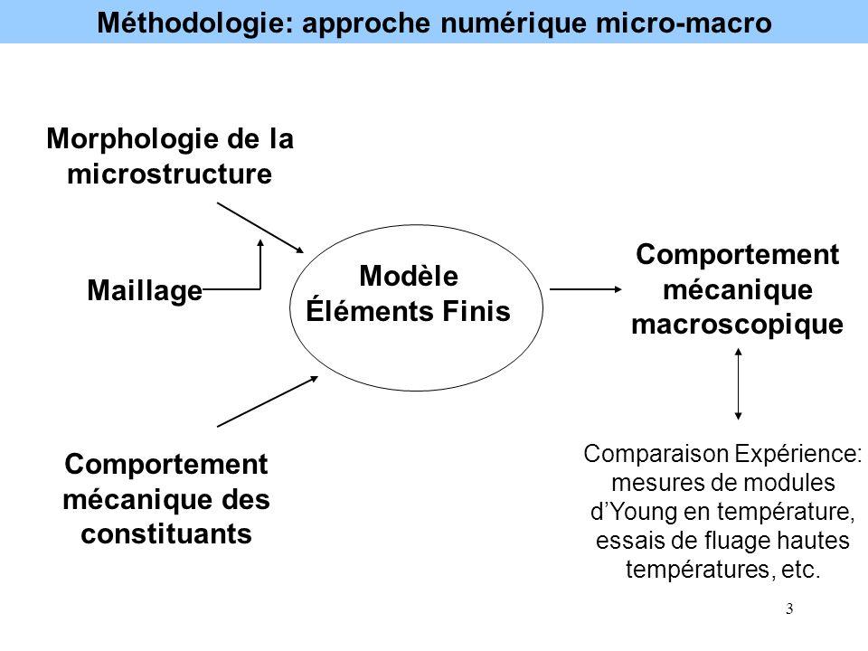 Méthodologie: approche numérique micro-macro