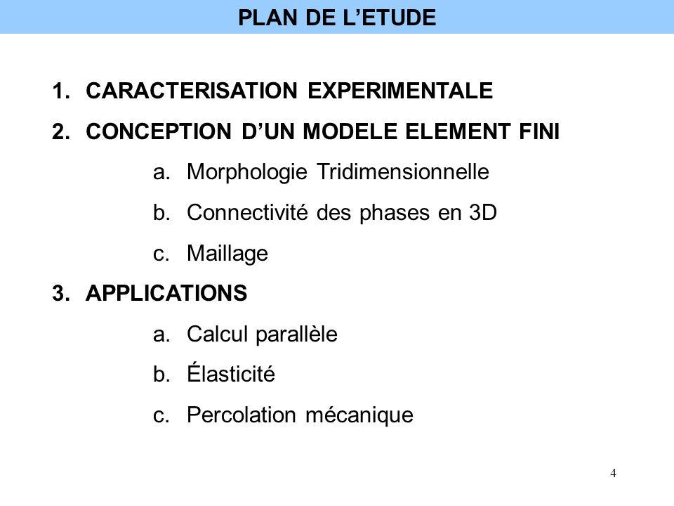 PLAN DE L'ETUDE CARACTERISATION EXPERIMENTALE. CONCEPTION D'UN MODELE ELEMENT FINI. Morphologie Tridimensionnelle.