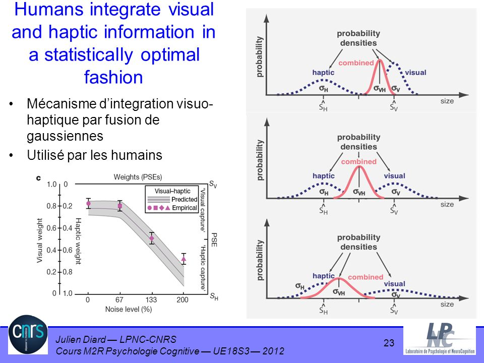 Humans integrate visual and haptic information in a statistically optimal fashion