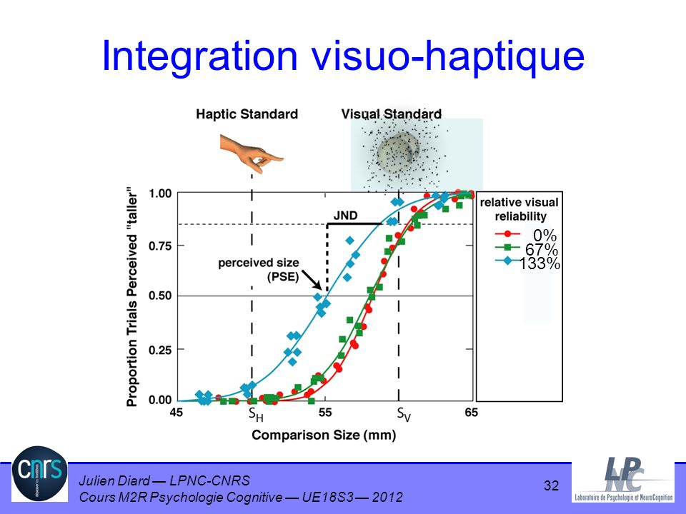 Integration visuo-haptique