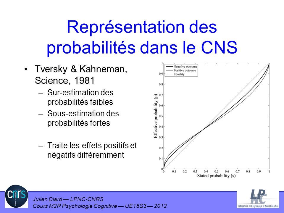 Représentation des probabilités dans le CNS