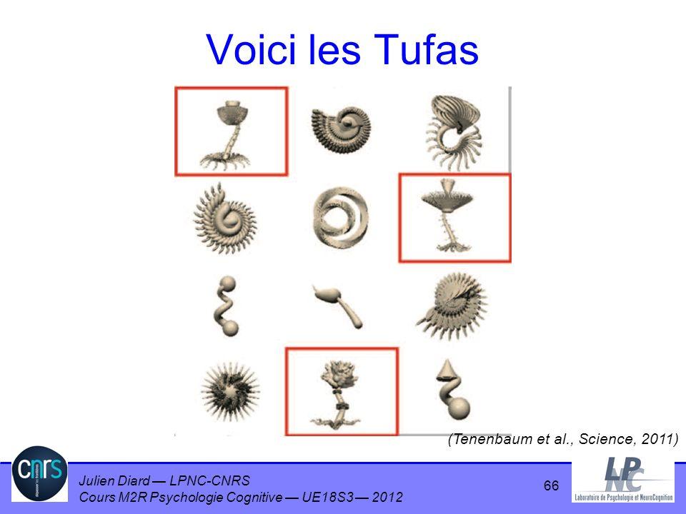 Voici les Tufas (Tenenbaum et al., Science, 2011)