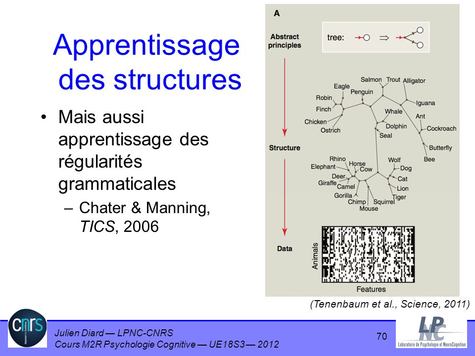 Apprentissage des structures