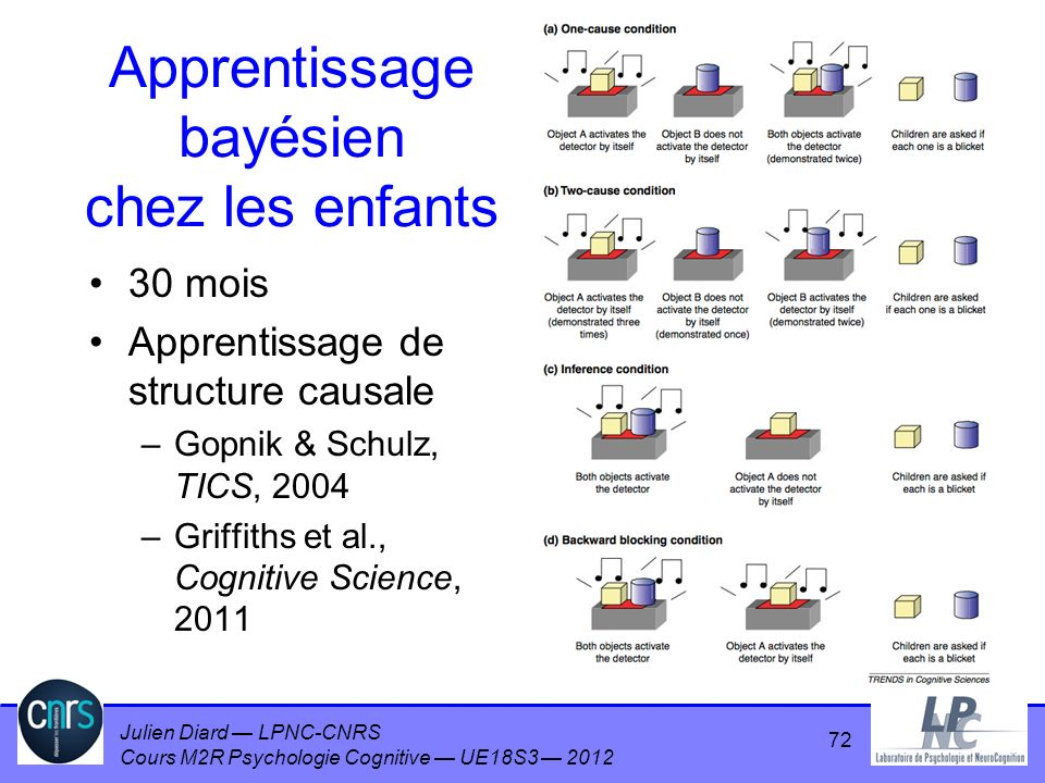 Apprentissage bayésien chez les enfants