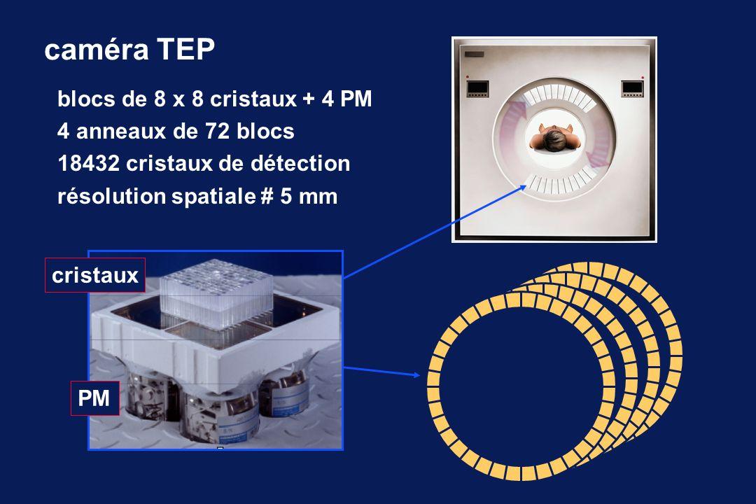caméra TEP blocs de 8 x 8 cristaux + 4 PM 4 anneaux de 72 blocs