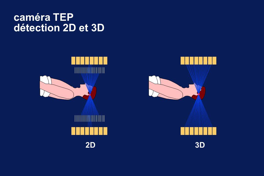 caméra TEP détection 2D et 3D