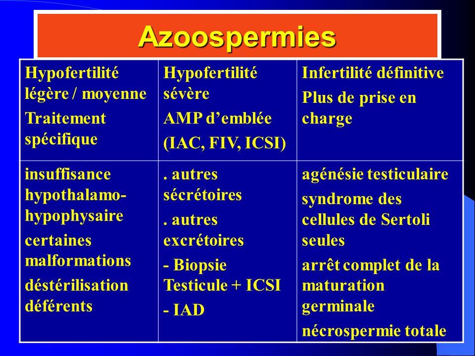 Azoospermies Hypofertilité légère / moyenne Traitement spécifique