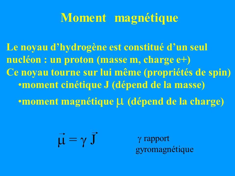 m = g J Moment magnétique Le noyau d'hydrogène est constitué d'un seul