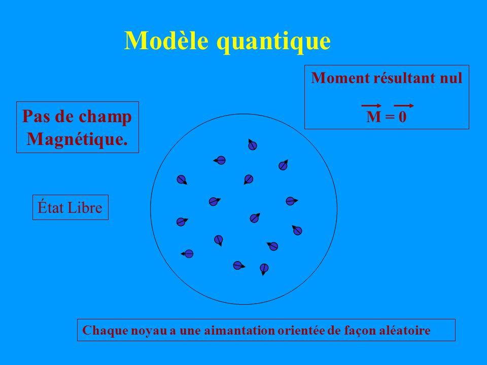 Modèle quantique Pas de champ Magnétique. Moment résultant nul M = 0