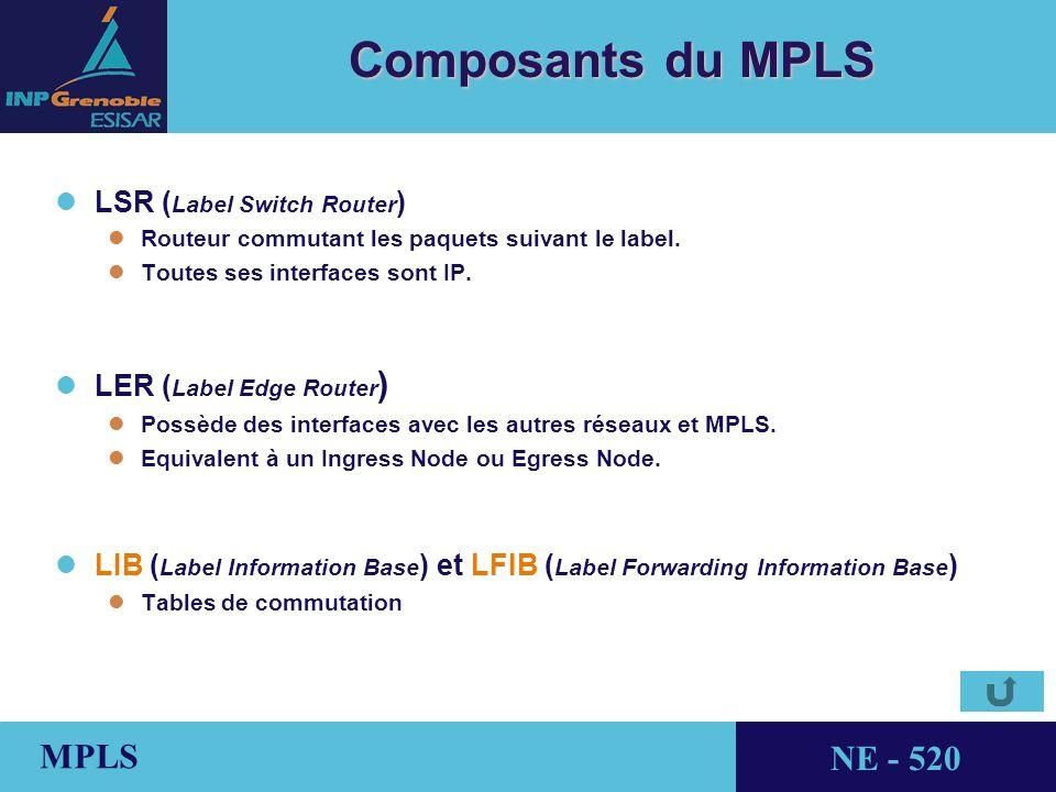 Composants du MPLS LSR (Label Switch Router) LER (Label Edge Router)