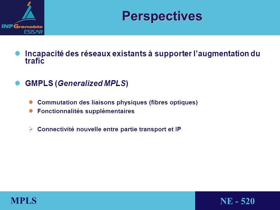 Perspectives Incapacité des réseaux existants à supporter l'augmentation du trafic. GMPLS (Generalized MPLS)