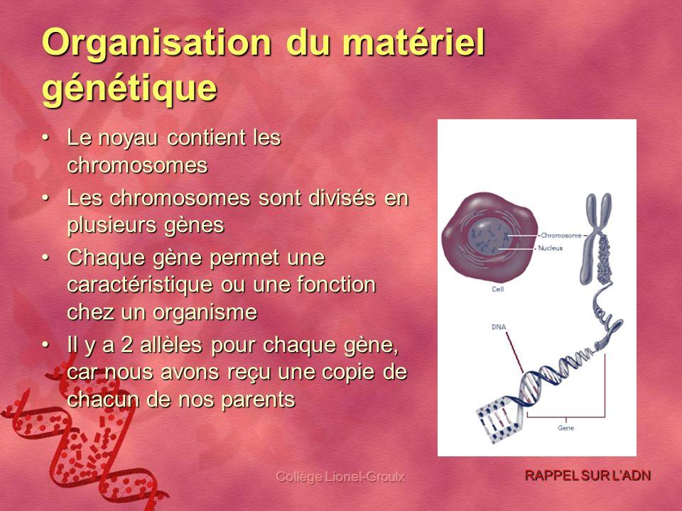 Organisation du matériel génétique
