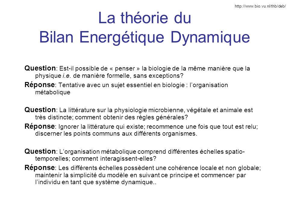 La théorie du Bilan Energétique Dynamique