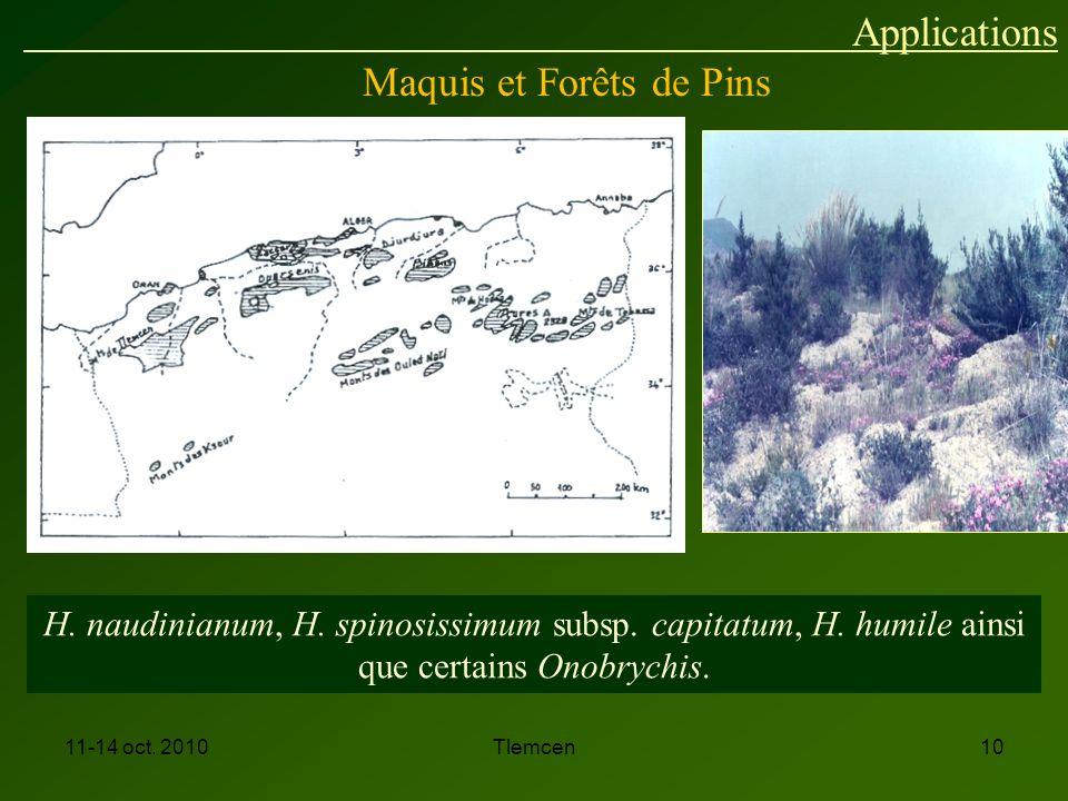 Maquis et Forêts de Pins