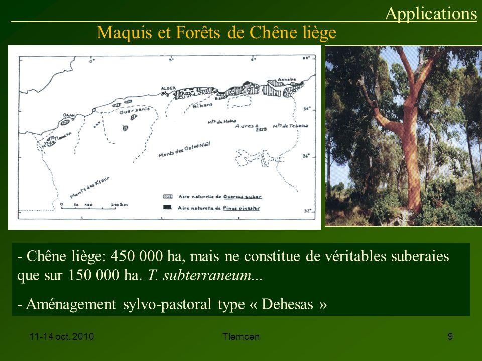 Maquis et Forêts de Chêne liège