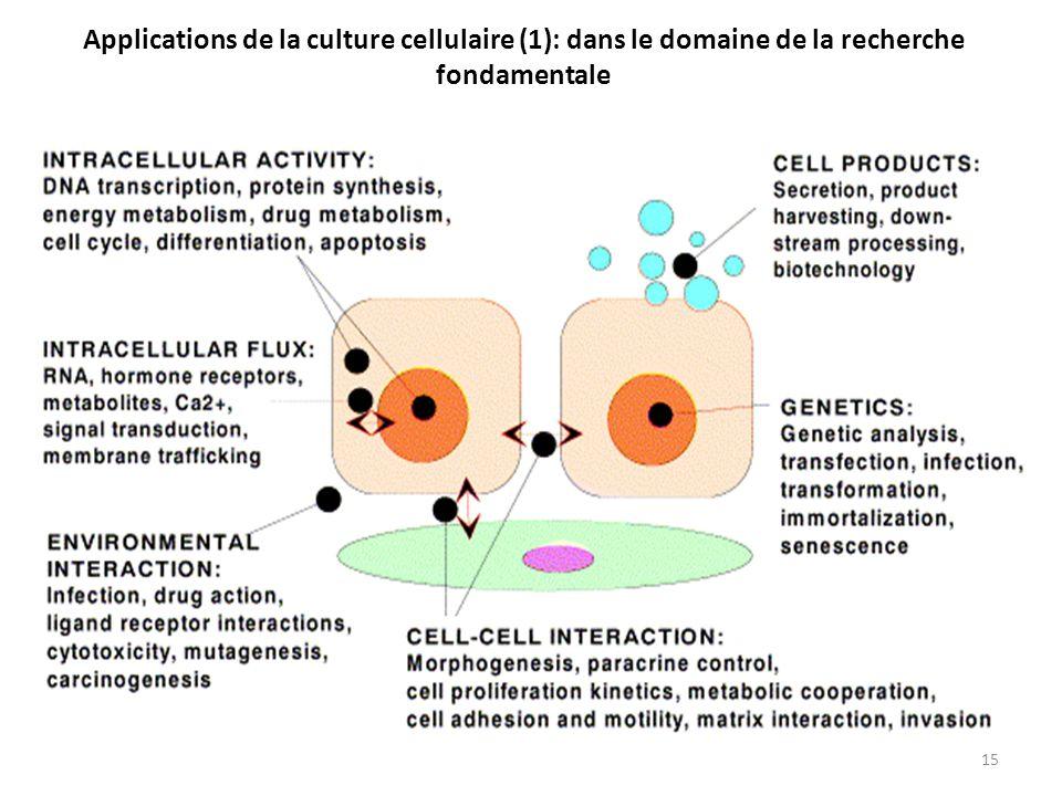 Applications de la culture cellulaire (1): dans le domaine de la recherche fondamentale