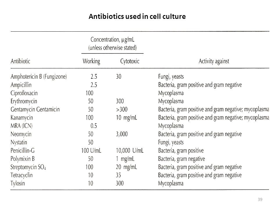 Antibiotics used in cell culture