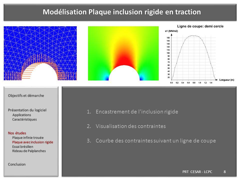 Modélisation Plaque inclusion rigide en traction