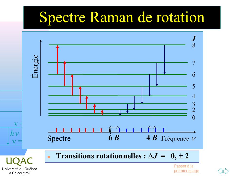 Spectre Raman de rotation
