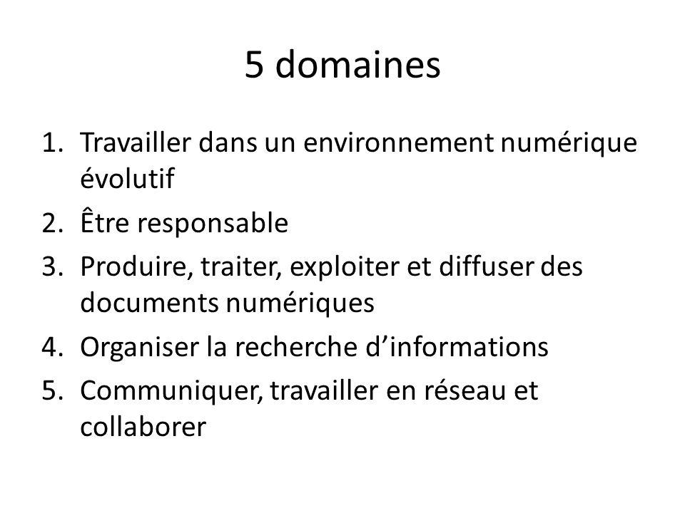 5 domaines Travailler dans un environnement numérique évolutif