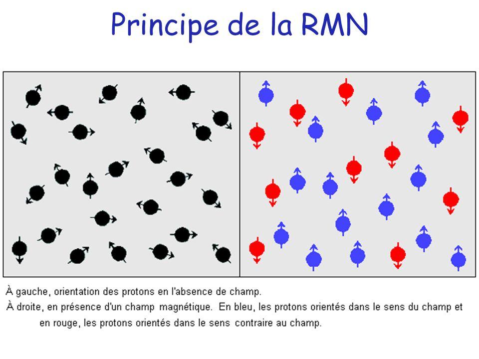 Principe de la RMN
