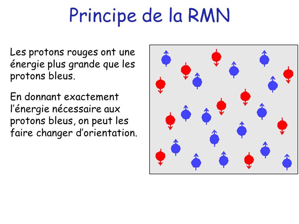 Principe de la RMN Les protons rouges ont une énergie plus grande que les protons bleus.