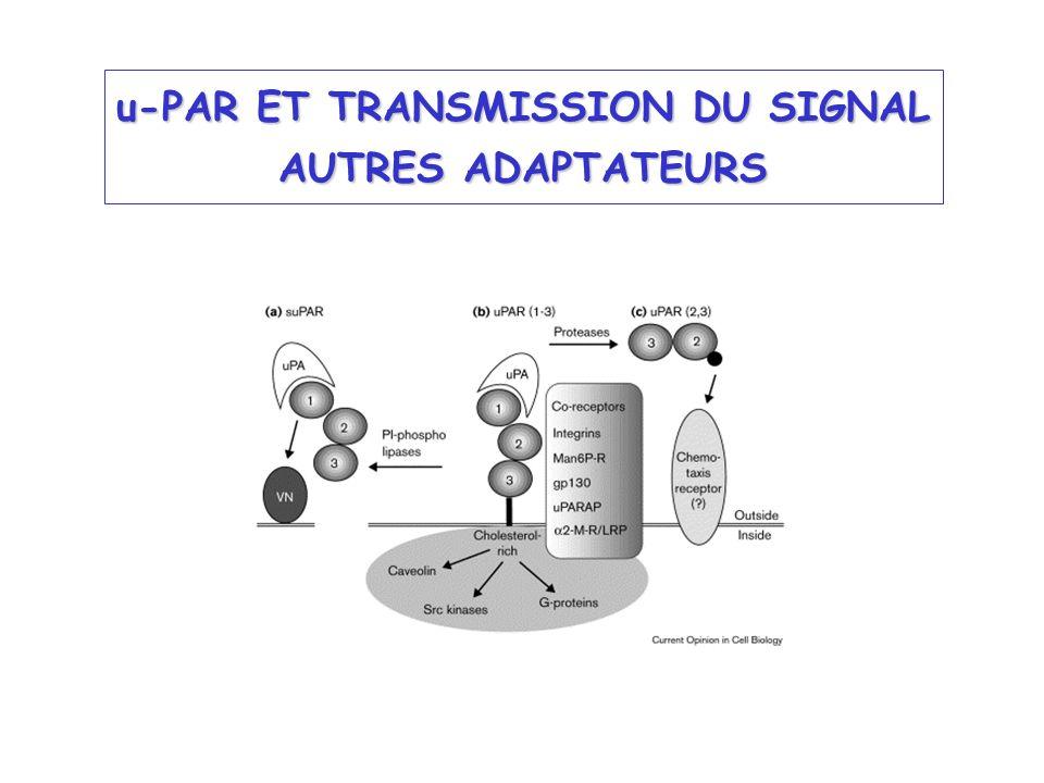 u-PAR ET TRANSMISSION DU SIGNAL